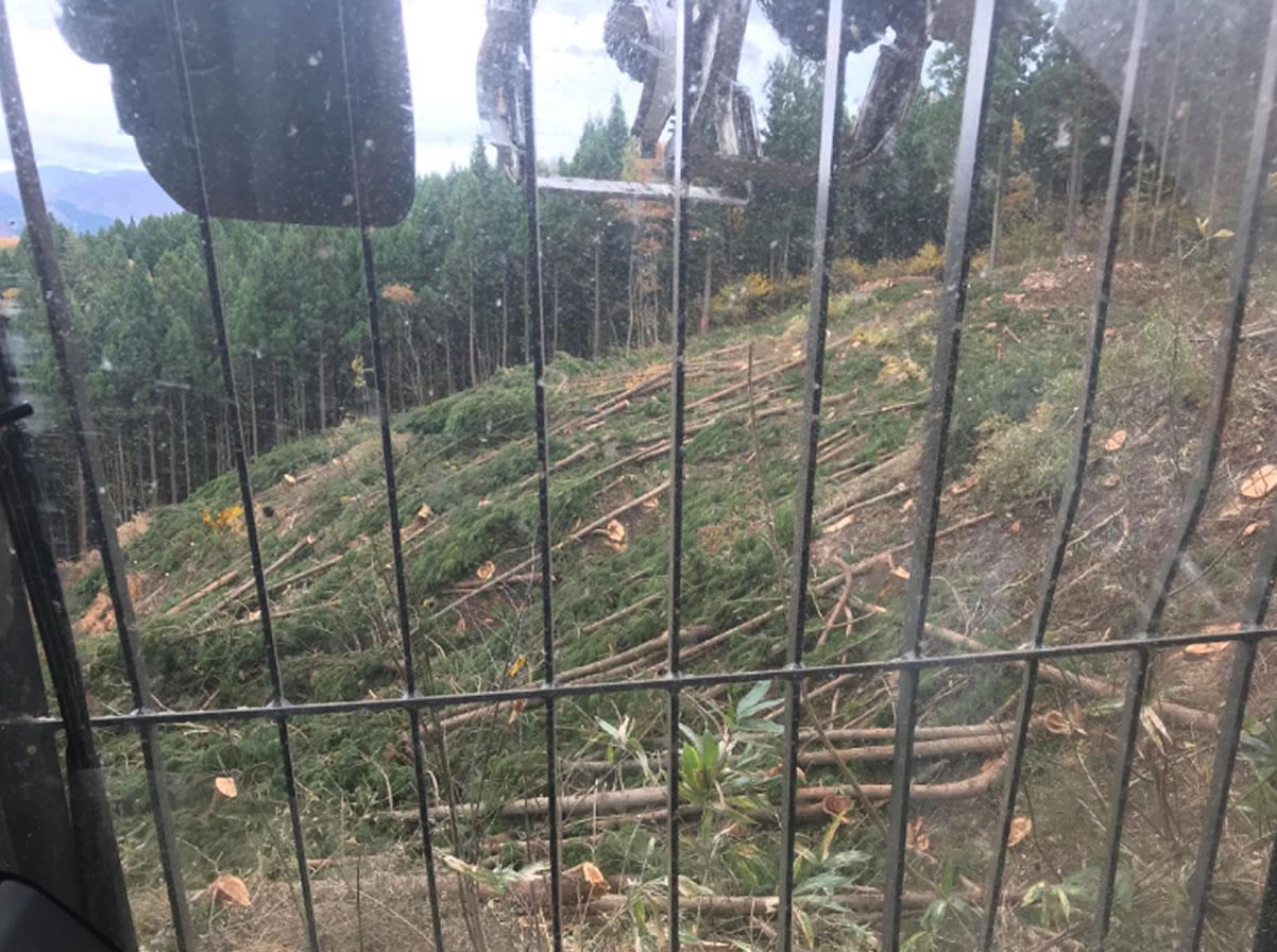 急斜面地の作業道開設