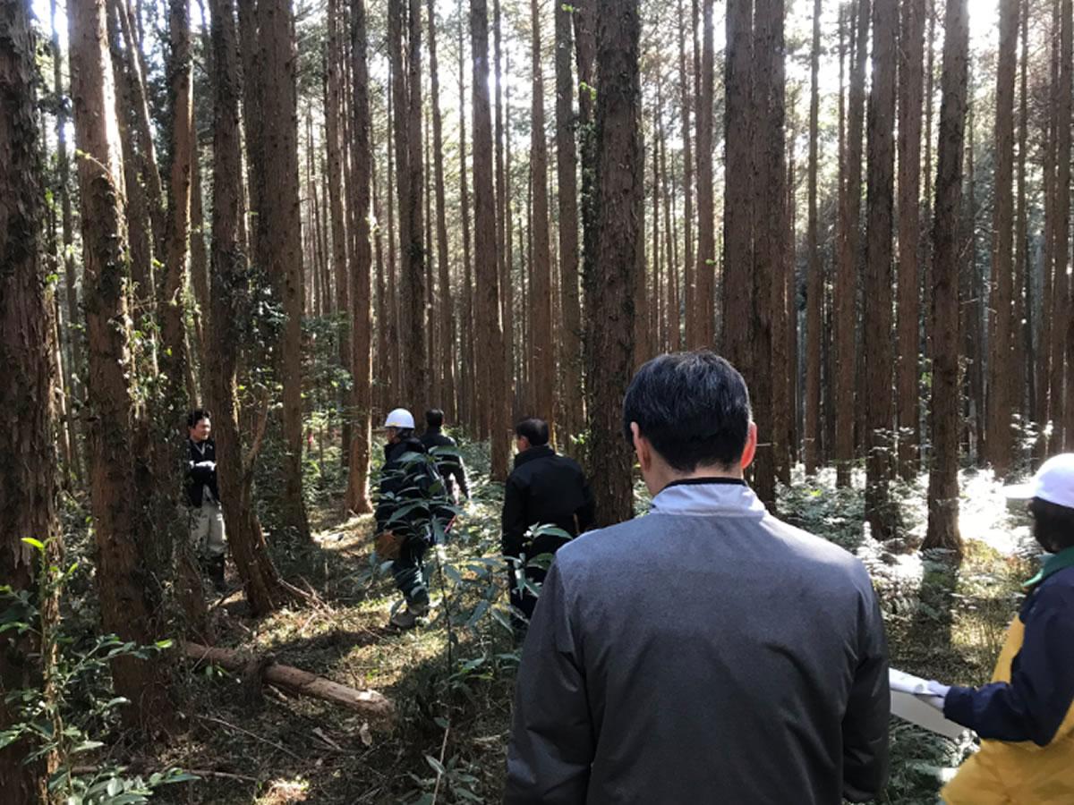 林業専用道敷設に向けた下見