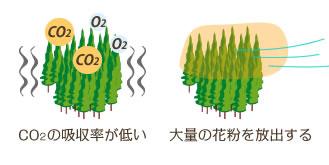 CO2の吸収率が悪い