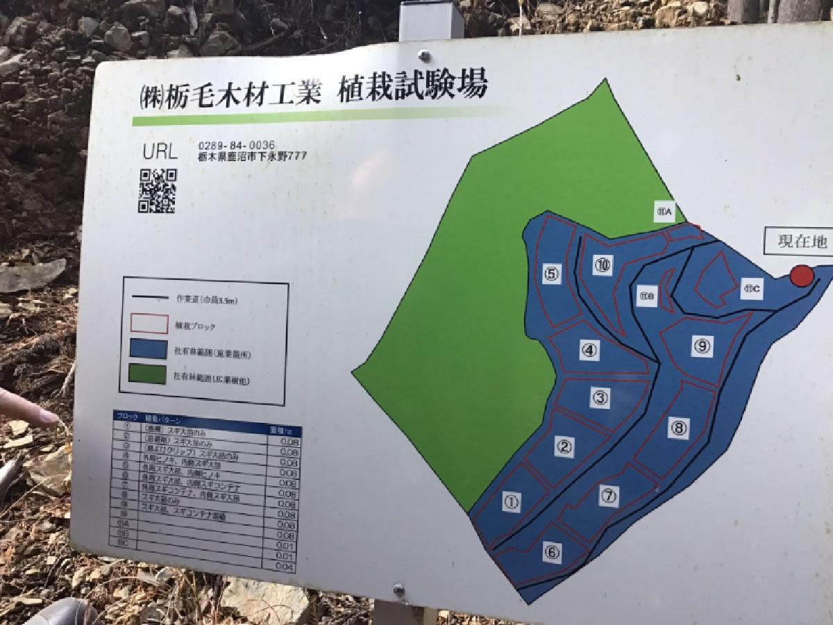 栃木の(株)栃毛木材工業様の取組みを視察しました